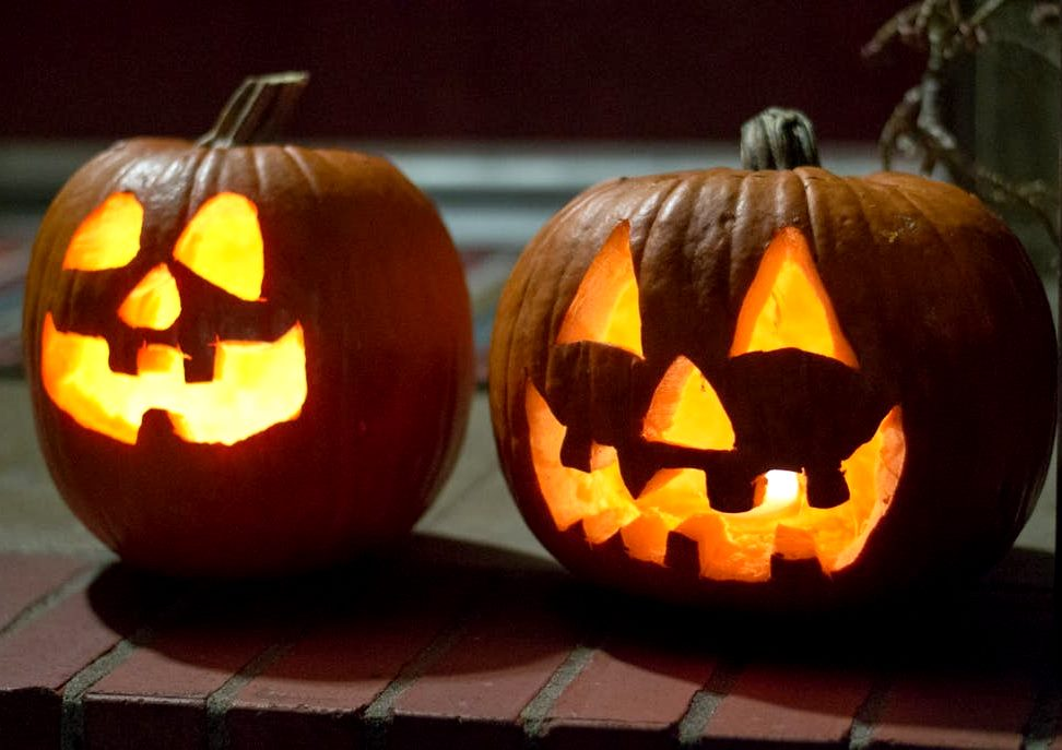 Calabazas de halloween c mo hacerlas decoraci n fotos - Decoracion de calabazas ...